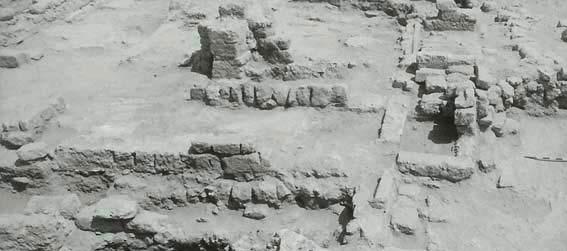 تاریخ شهر نشینی دوره اسلامی