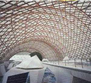 استفاده از ساختار پا انسان به عنوان سازه ساختمان