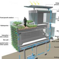 ادغام كردن معماري همساز با محيط پيرامون